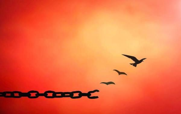 ChainsToFreedom